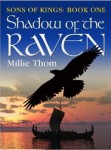 Gift Guide: Shadow of the Raven by Millie Thom